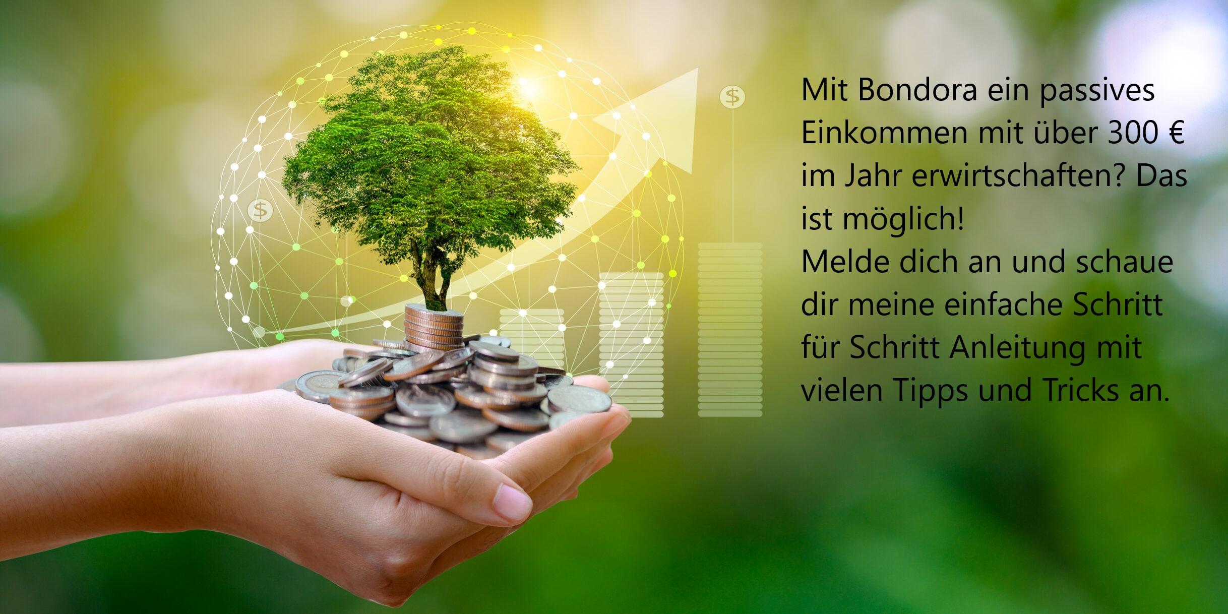 8. Tipps mit Bondora Kredite Geld zu machen und 5 € Bonus